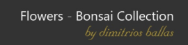BONSAI-COLLECTION